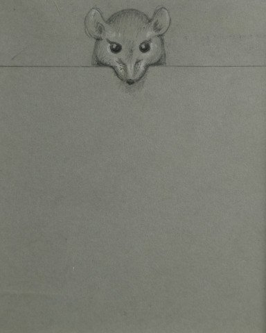 Animal Graphite on Gray Paper Drawing Sketch: