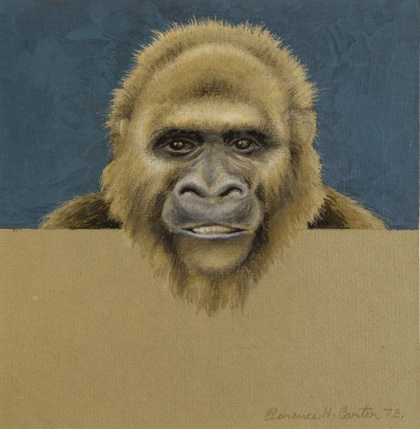 Animal Colored Pencil on Paper Drawing: