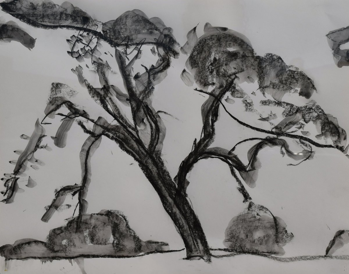 Landscape Pen and Ink Drawing: