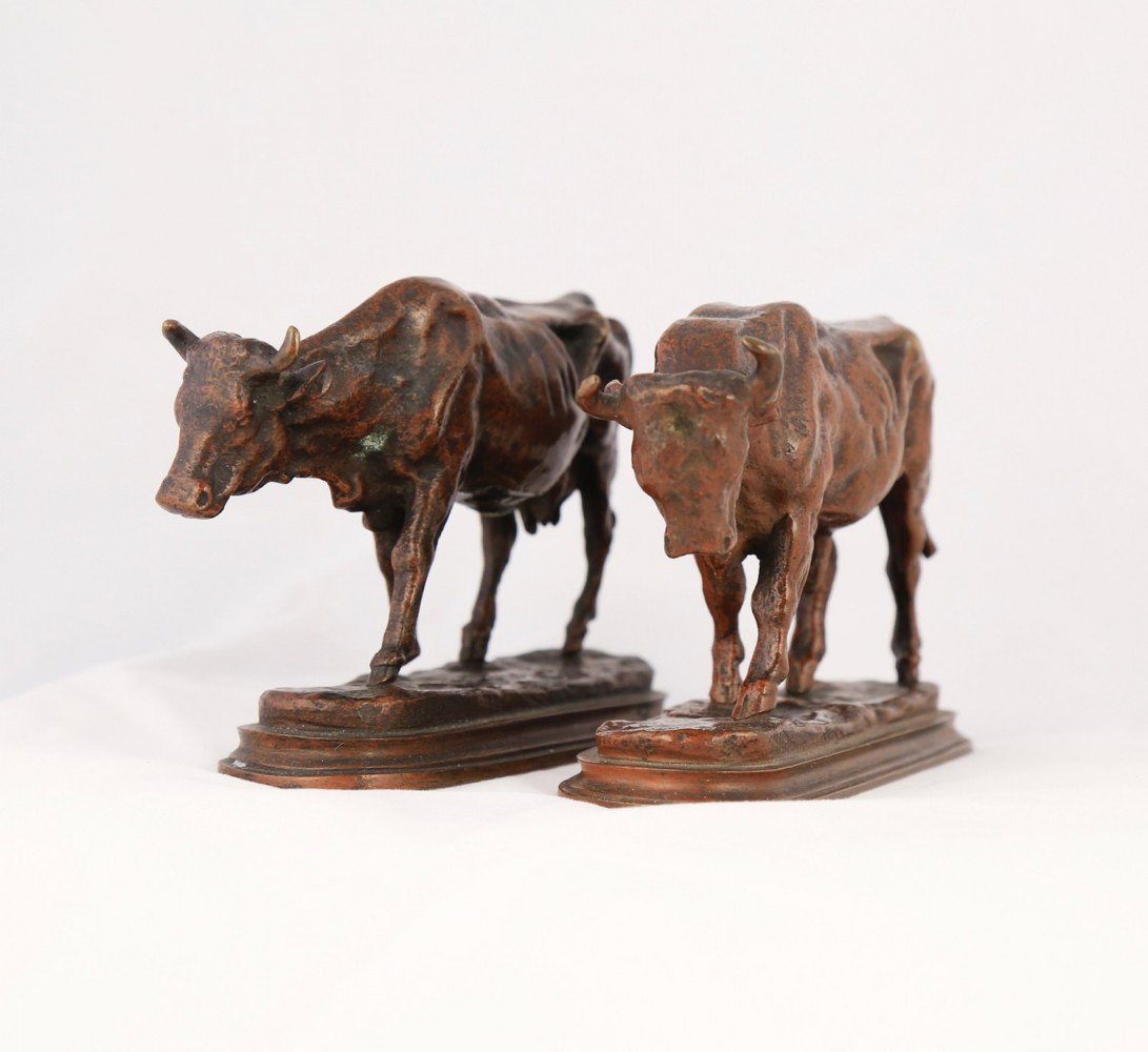 Pair of Bronze Sculptures, Bull and Cow by Auguste Caïn