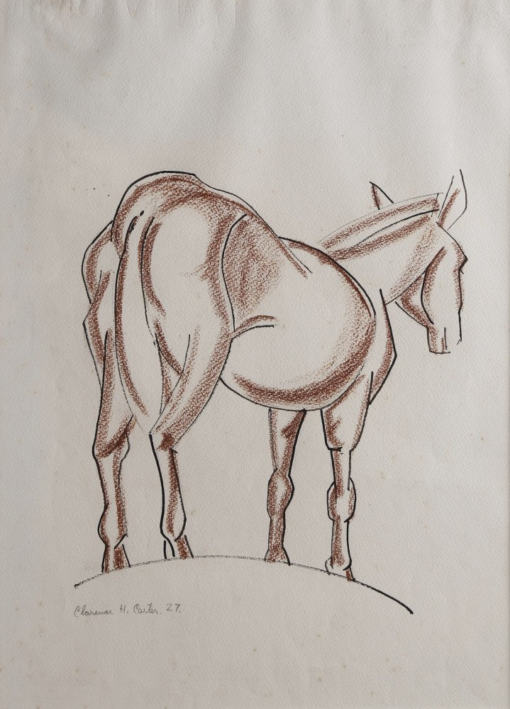 Animal Conté Crayon and Ink on Paper Drawing: