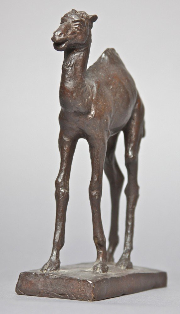 Baby Camel by Frederick George Roth